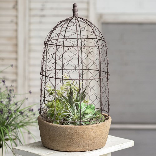 Tall Chicken Wire Cloche with Terracotta Pot